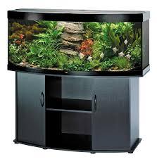 Stylish Modern Aquarium Design For Home Interior Modern Aquarium