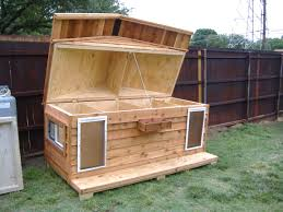 ideas about Insulated Dog Houses on Pinterest   Dog Houses    dog house for two   Custom Large Heated Insulated Dog House   Porch  amp  Pet Doors