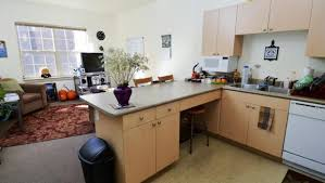 2-Bed 1-Bath, Single Apartment living room & kitchen