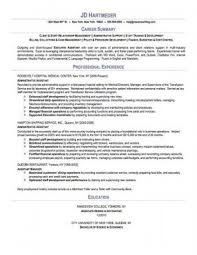 Career Summary Examples For Resume Extraordinary Resume Template Examples Of A Professional Summary For A Resume