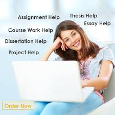 my custom essay okl mindsprout co my custom essay