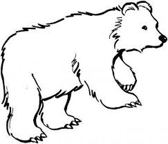 Cute Polar Bear Coloring Pages Concept Of Panda Bear Coloring Pages