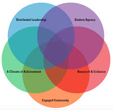 Student Venn Diagram A 5 Way Venn Diagram Highlighting The 5 Pillars Of Whole School
