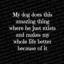 Top 40 Greatest Dog Quotes And Sayings With Images Classy A Quote About Life