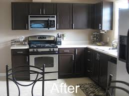 Espresso Painted Cabinets Or Wait Do I Like The Dark Cupboards And Keep The Counter The