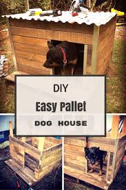 How to Make a Dog House Using Pallets in Easy Way | Dog houses, Pallets and  Dog