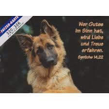Postkarten Hunde 6 Stück Schreibwaren