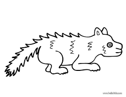 Small Picture Skunk coloring pages Hellokidscom