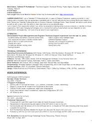 It Support Resume Examples Resume Peppapp