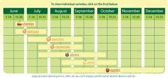 Fruit Market Boyer Nurseries And Orchards Inc