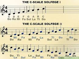 how to read bass sheet music how to read music with pictures wikihow
