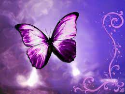 Cool Butterfly Backgrounds ...