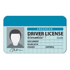 Licence Driving Driving Clipart Licence Clipart