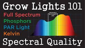 Par Light Quality Leds Hid Plant Grow Light Basics 101 Pt 1