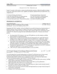 Leadership Resume Examples Section Skills Sample C Peppapp