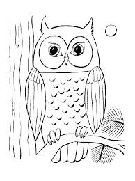 Coloring Pages Of Owls For Adults Coloring Printable Difficult
