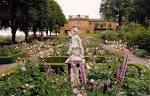 escort stoccolma rosa sidan stockholm