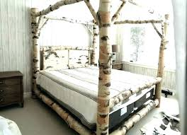 White Canopy Bed Frame Queen Canopy Beds Queen White Canopy Bed Room ...