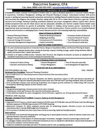 Successful Executive Resumes Free Samples Examples Format