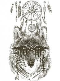 Fotka Vlk Vlk Indický Bojovník Vlk Skica Vlk Indický Ručně