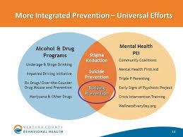 Health Pei Organizational Chart 2 Cross Systems Integration In Behavioral Health Mental