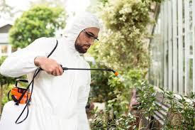 best garden sprayer. Best Garden Sprayer - Man Spraying Plants