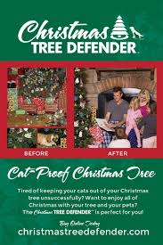 Uncategorized  Clarks Christmas Tree Farm And Shop Celebrate The The Christmas Tree Store Flyer