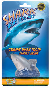 shark teeth dig kit discover dr cool stemfinity quick view