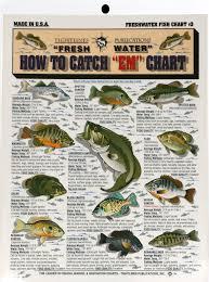 Fishermans Freshwater Fish Chart 3