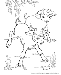Small Picture Farm Animal Coloring Pages Printable Baby goats Coloring Page