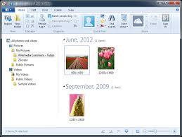 microsoft windows photo gallery how to organize digital photos