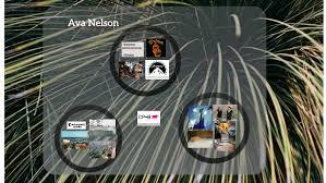 Ava Nelson by Ava Nelson
