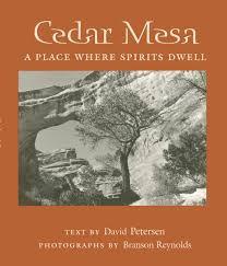 Cedar Mesa: A Place Where Spirits Dwell (9780816522347): David ...