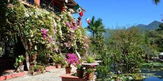 vallarta s botanical garden nominated as one of the 10 best in north america