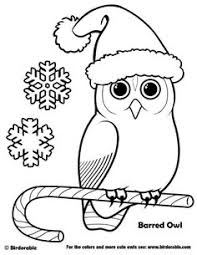 Small Picture owl adult coloring pages coloring pages for adults Pinterest