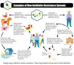ways to tackle the sp of antibiotic resistance honeycolony solution