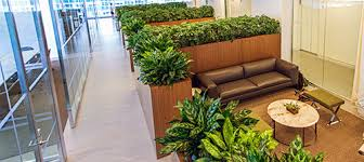 interior landscaping office. Indoor Plantings Interior Landscaping Office