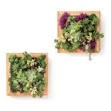 living wall planters vertical gardens