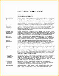 Example Of Professional Profile For Resume Maggilocustdesignco