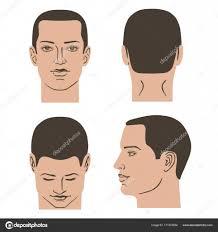男の髪型セット ストックベクター Arlatis 171372834
