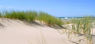 Bildresultat för gotland strand