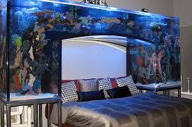 Fish tanks  '