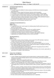 Hr Professional Resume Samples | Velvet Jobs