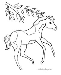 These printable coloring pages are related to some subject areas. Horse Coloring Pages Online Coloring Home