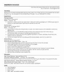 Command Sergeant Major Resume Example Aerial Intelligence Package ...