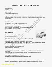 Technology Resume Template Best Of Resume Template Tech Best Templates 24