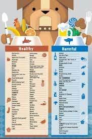 Food Chart Dog Food Recipes Dogs Homemade Dog Food