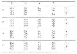 Генетика и генетический код Реферат Похожие работы