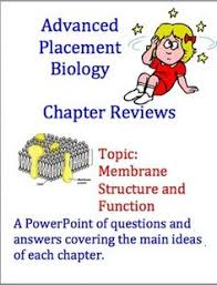 cell membranes transport cell membrane graphic organisers and  advanced placement ap biology review ppt cell membranes