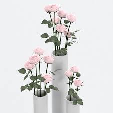roses in vases 3d model 3d